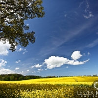 Piękna ziemia polska